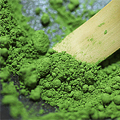 Exquisiter Teegenuss aus Japan:  MATCHA